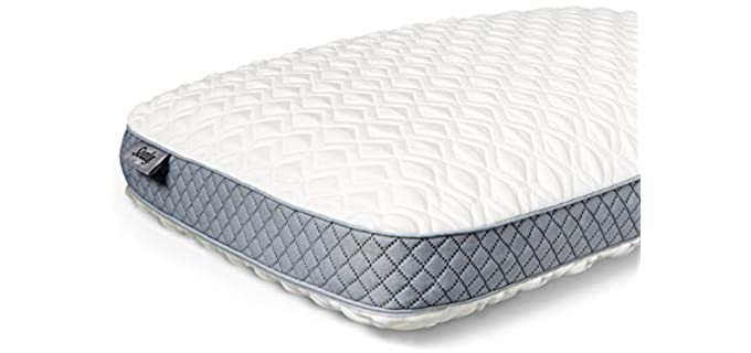 Sealy Molded - Memory Foam Pillow